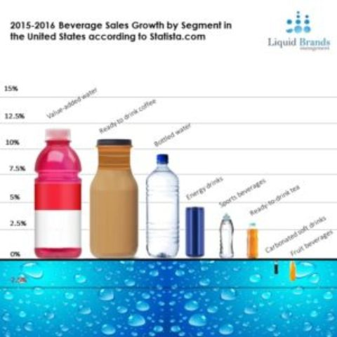 2015-2016 Beverage Sales Growth by Segment in the U.S.